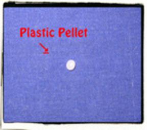Pelletttttt!