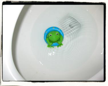 Discard: 1 unfortunate frog