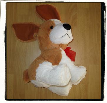 Discard: puppy dog