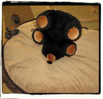 Discard: bear