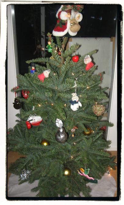O Small Tree!
