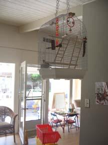 Cat-safe cage hanging!
