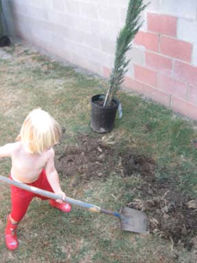 Digging! In DIRT! (said in his little, rough pirate voice)