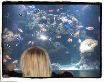 Nemo! Dory! OMG!