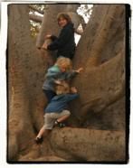 Tree kids!